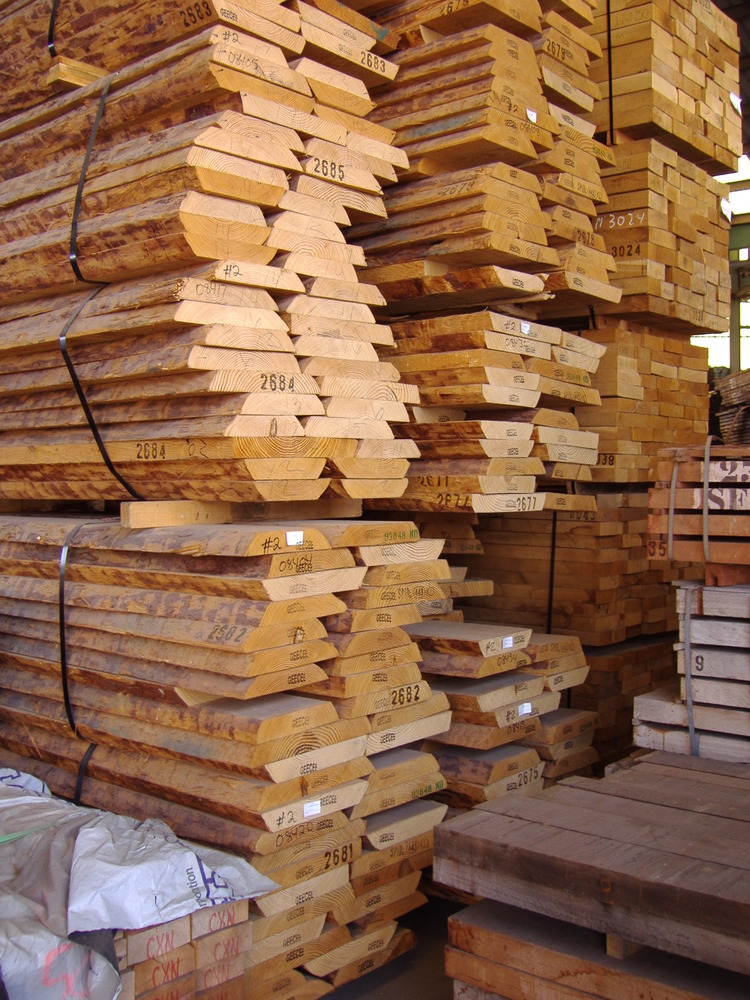 Softwood Trees In Florida ~ American softwoods launch new species brochure