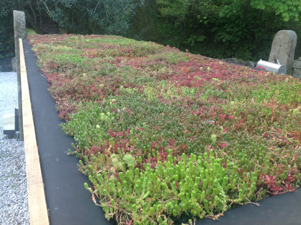 Green Roof Architecture Design Amp Innovation