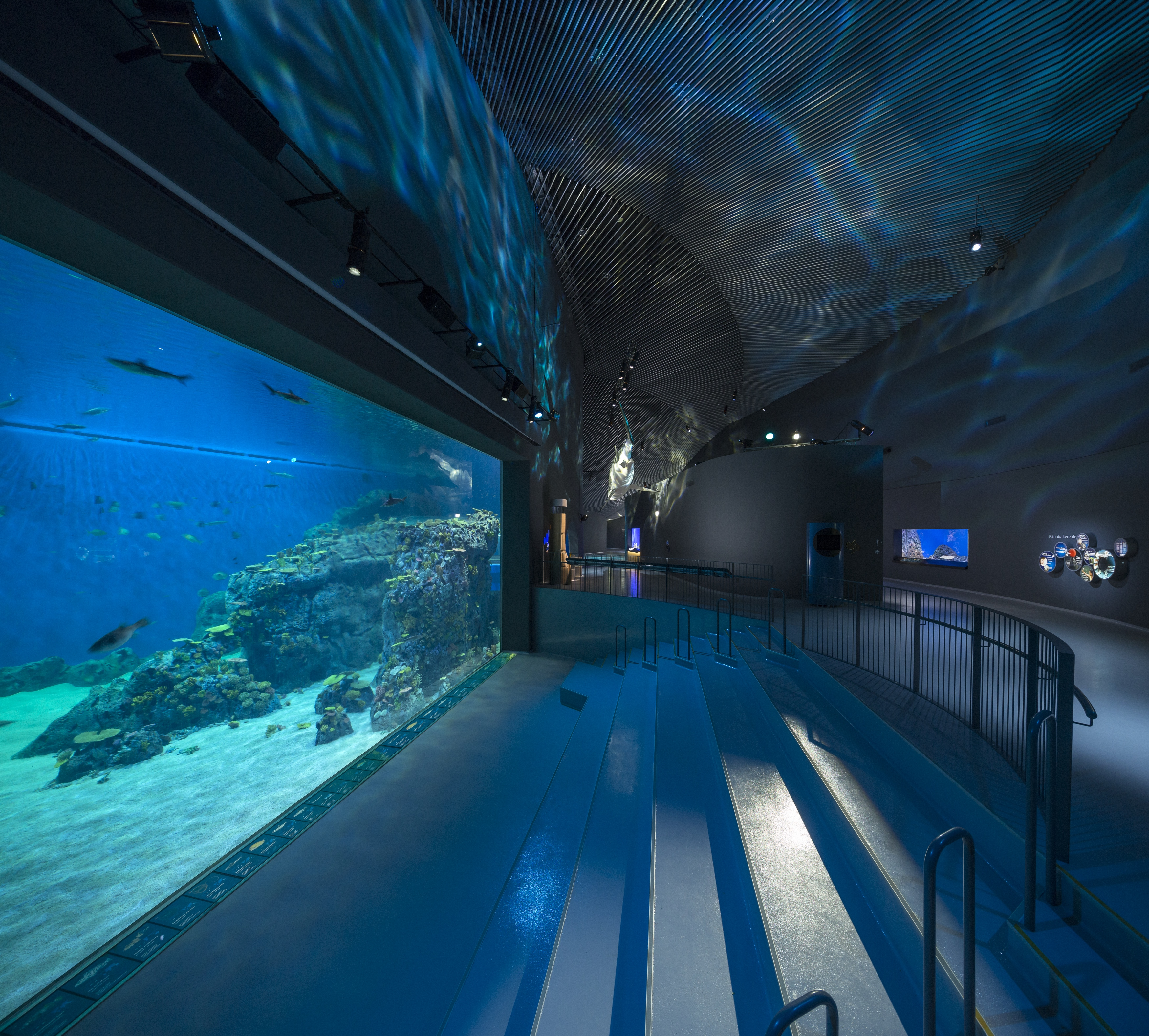 Bespoke Floor Provided For The Blue Planet Architecture