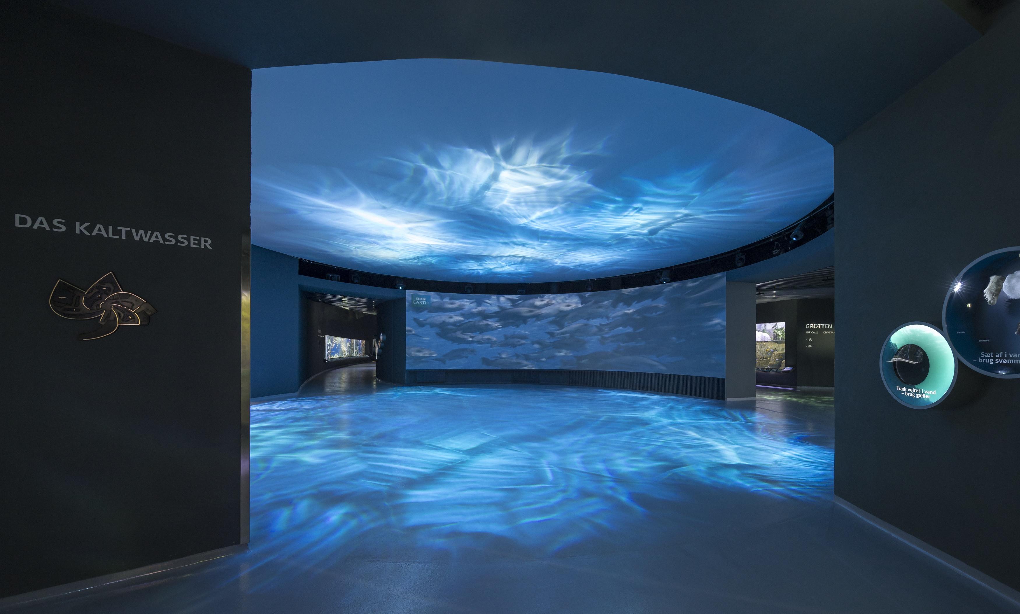 Flowcrete8 for Floor aquarium