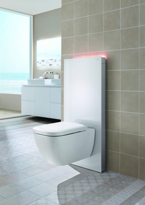 2014 Bathroom 6_B2 Monolith Plus (2) - Copy