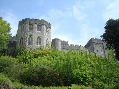 Castle (5)