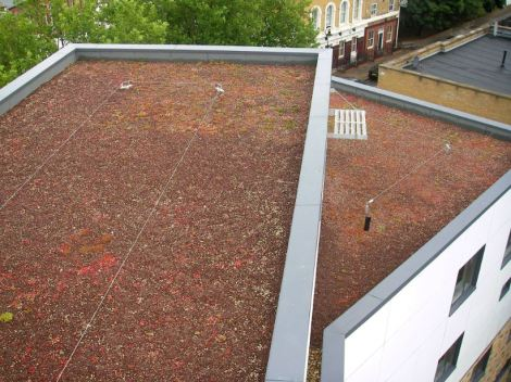 Green roofs can 'grow' around a safety system