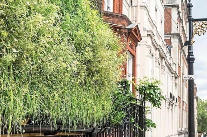 New living wall launched could lead to 20% carbon reduction